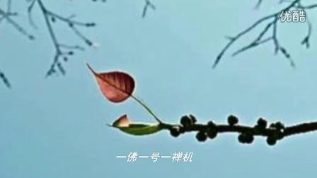佛歌-一菩提