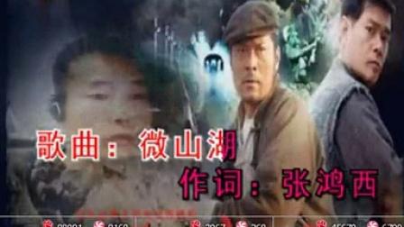 唱响中国歌星汇庆祝[影视金曲金典演唱会]视频]