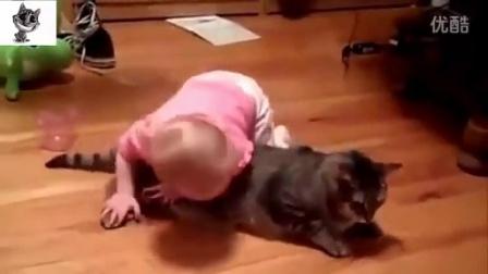 小宝宝和汪星人的搞笑视频大集合(笑死你不偿命)