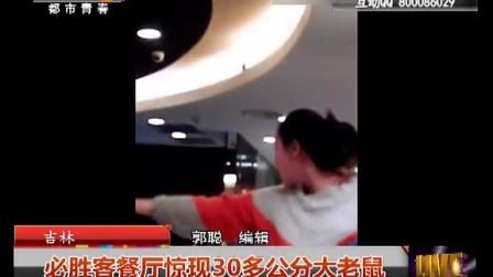 吉林:必胜客餐厅惊现30多公分大老鼠 都市热线 141210