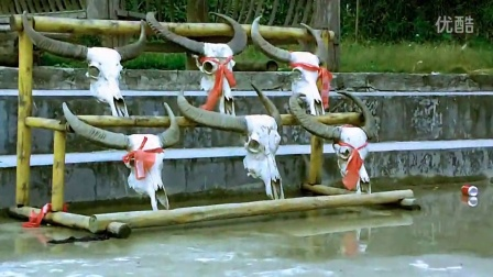 贵州荔波--瑶山古寨 二片瑶姑娘铜鼓舞风情万种
