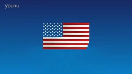 Buck - Exxon - Flag