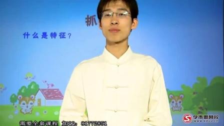 小学三年级语文知识大全非常作文训练营王雨洁 10讲讲义