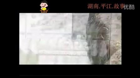 湖南平江特产 中国有个平江 湖南豆干