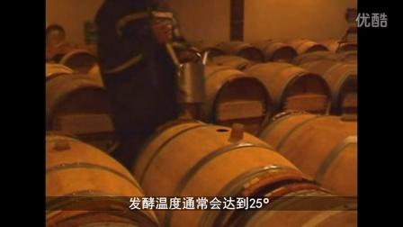白葡萄酒酿造