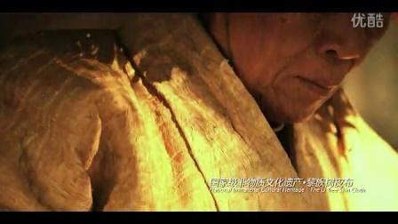 《海南保亭》城市宣传片