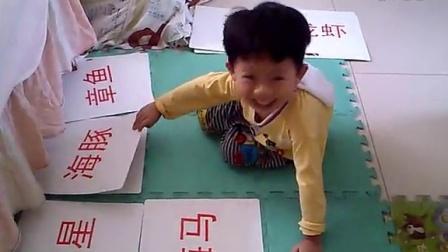 大赢海洋动物图片&中文配对(3岁)