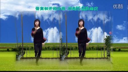 风中梅花广场舞:dj爱情莎啦啦   江源老师制作   美久编舞