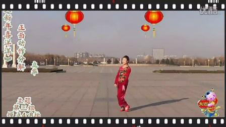 临盘立华广场舞新年喜洋洋分解