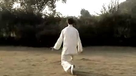 85式杨式大架太极拳 背面演练口令版