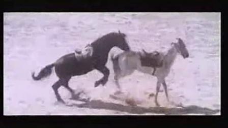 海市蜃楼片段(日版名:天山回廊)