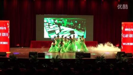 铜陵职业技术学院新年舞会(三)