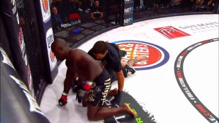 Bellator.MMA.Top.20.Knockouts.