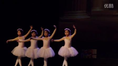 雨薇舞蹈培训机构 泰州大剧院演出 《梦中的粉红舞鞋》