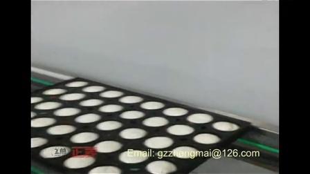 蒸蛋糕生产线-2 (隧道炉,食品厂烘烤炉,电烤箱 商用 正麦机械)