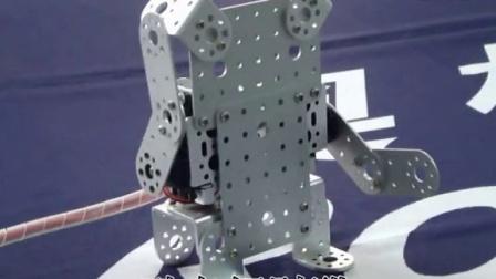 百变之星创意拼装套件-酷卡招财猫