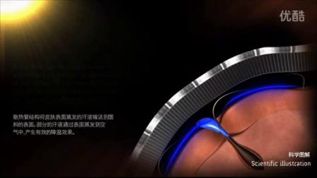 散热管原理 X-Bionic - Heatpipe Principle