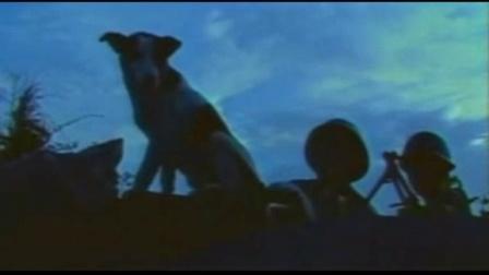 《月亮之歌》电视剧《凯旋在子夜》主题曲:复音口琴C吹奏—轮歌