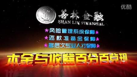 善林上海金融信息服务有限公司