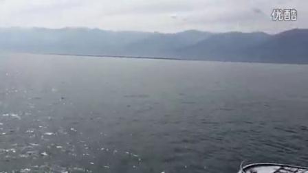 大理苍山洱海游船