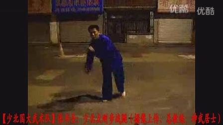 【少北国大武术队】张书圣:少北点刚腿战(总教练:神武居士)