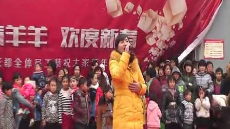 邢台市平乡县王固村新年联欢会