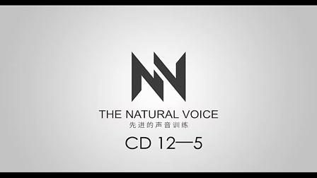 Singing Success CD 12