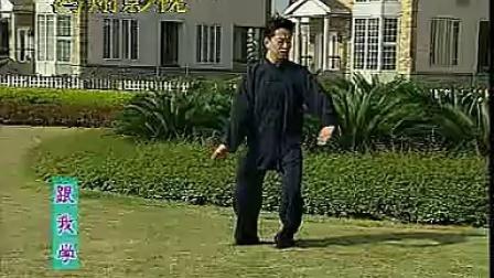 王二平陈氏太极拳老架一路教学10