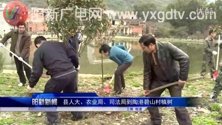 阳新新闻(2015年3月11日)