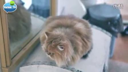 庾澄慶 x Frontier 車衣平面攝影記錄