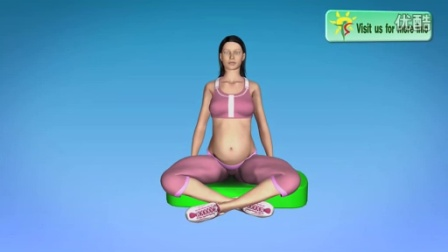 2nd and 3rd Trimester Pregnancy Yoga and Pregnancy Exercise at Home