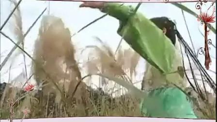 黄维德 韩瑜《青龙好汉》MV青龙 群英