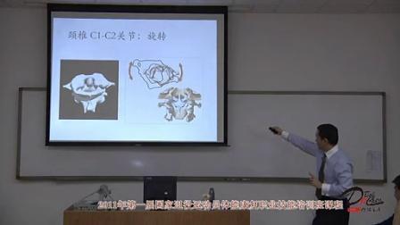 《颈椎功能解剖》 颈椎的附属韧带