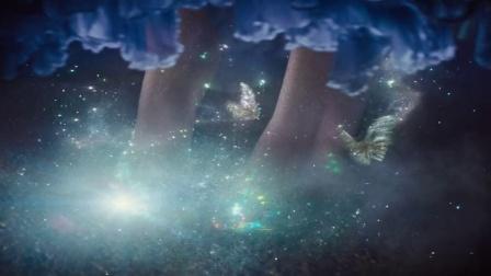 《灰姑娘》电影片段 水晶鞋诞生