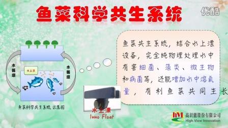 hVI高识能_鱼菜科学共生法-绿色洁净养种结合技术再进化