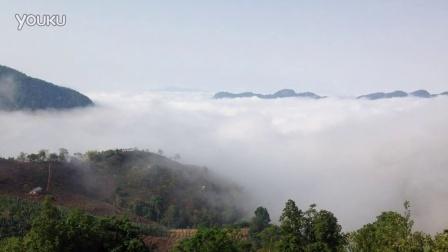蜗居茶艺培训中心   上云南西双版纳茶山拍的  云海