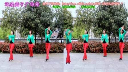 沅陵燕子广场舞《秀恩爱》