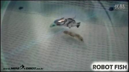Robot fish F