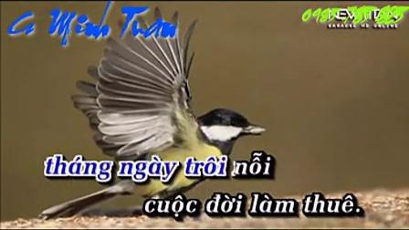 Thuong Nguoi Lam Thue - Cs MinhTuan