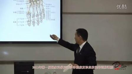 《踝关节功能解剖》踝关节和脚的骨头结构