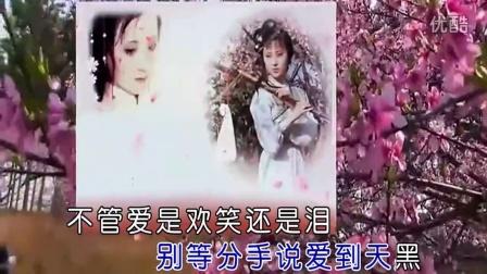 蓝香-桃花泪-KTV