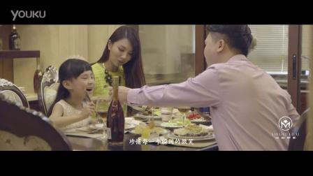 香港韦尼森国际家居(新天城市广场、小米电影)-宣传片