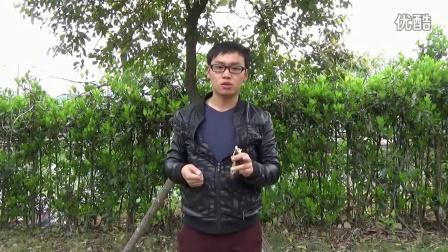 无极弹弓 打法瞄打估打瞄估打甩手振打教学视频