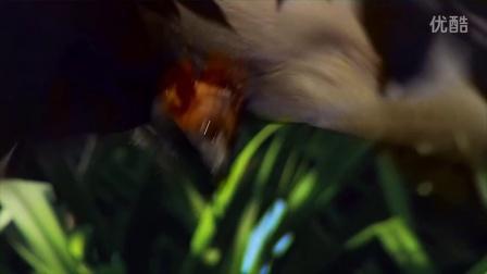 【SounDoer】Conversations Sounds in Space - Penguins and Bats