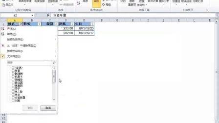 Excel2010实战技巧精粹-Excel2010灵活筛选数据