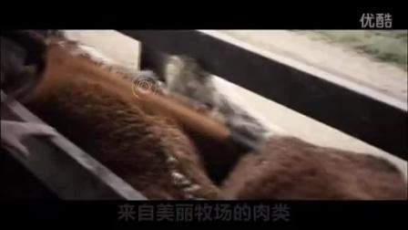 """新西兰贸发局大中华区总裁Glen Murphy致""""海鲜节"""""""