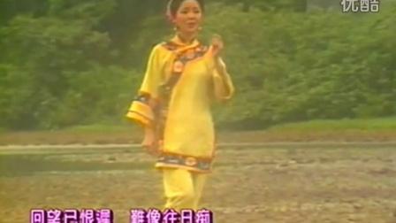 邓丽君 - 东山飘雨西山晴
