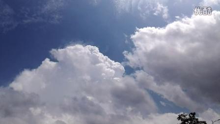 看天上云卷云舒,去留无意