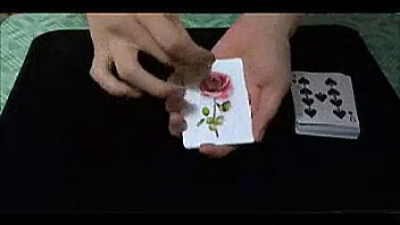 魔术天下 新玫瑰扑克 玫瑰色的你 新版单车玫瑰扑克牌