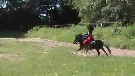 女王骑马2